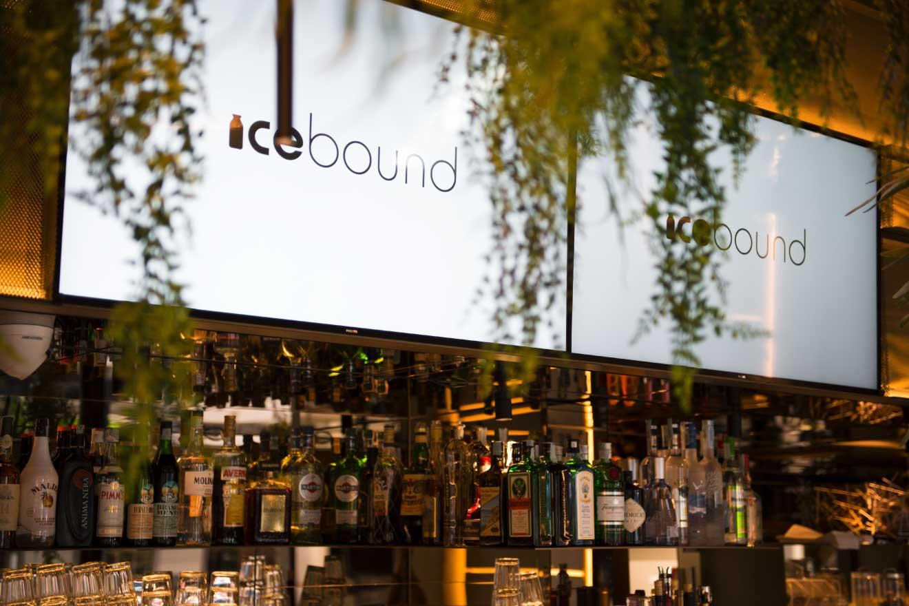 icebound-chi-siamo